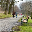 ein paar walking im Forest park — Stockfoto #22158453