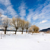 Beautiful winter landscape in the mountains. — Stock Photo