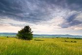 Polish countryside landscape — Stock Photo