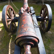 Old field cannon — Stock Photo #26322985