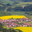 Slovakia countryside - Summer mountain panorama, Stara Lubovna — Stock Photo #26323101
