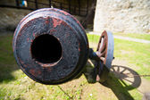 Old field cannon — Stock Photo
