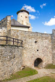 Stara Lubovna Castle, Slovakia — Stock Photo