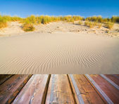 Wooden floor on golden sandy beach — Stock Photo
