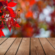 Empty wooden deck table and red ivy. Ready for product montage display.  — Stock Photo