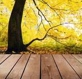 Empty wooden deck table in the park. Ready for product montage display. — Stock Photo