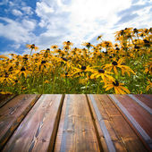 Beautiful garden background with empty wooden deck table. Ready for product montage display. — Stockfoto