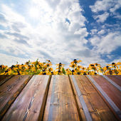 Beautiful garden background with empty wooden deck table. Ready for product montage display. — Foto Stock