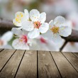 Apple blossoms in spring and empty wooden deck table — Stock Photo #32769549