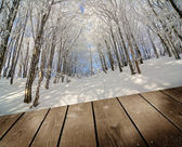 Winter forest and empty wooden deck table, ready for product montage display. — Stock Photo