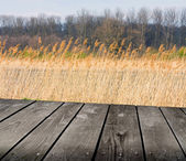 Reed and empty wooden deck table. Ready for product montage display. — Stock Photo