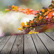 Autumn theme and empty wooden deck table. Ready for product montage display — Stock Photo