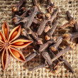 Traditional Christmas spices - star anise and cloves — Stock Photo