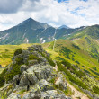 Tatra gebergte - chocholowska valley — Stockfoto
