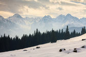 Winter view of frozen surface of High Tatra mountains — Стоковое фото