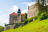 Castle Pieskowa Skala in National Ojcow Park, Poland  — Stock Photo