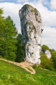 Maczuga Herkulesa, rock in National Ojcow Park, Poland  — Stock Photo