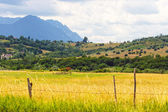 Rainy mountain landscape, Romania — Stock Photo