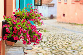 Medieval street view in Sighisoara founded by saxon colonists in XIII century, Romania — Stock Photo