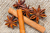 Cinnamon and anise  — Stock Photo