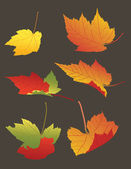 Falling Autumn Leaves — Stock Vector