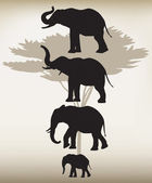 Elephants In Different Poses — Stock Vector