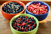 Blueberries vs cowberries — Stock Photo