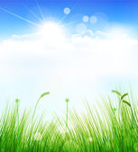 Vector background with a blue sky, grass and sun — Stock Vector