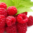 Raspberries on a white background — Stock Photo