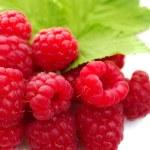 Raspberries on a white background — Stock Photo #18914231