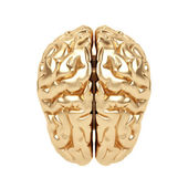 Golden brain on a white background. — Stock Photo