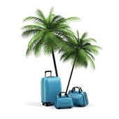 Luggage and palms on a white background. — Stock Photo