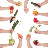 Hand vegetable set — Stock Photo