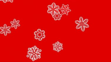 Different sort of snowflakes, effect snowfall. Red background — Stock Video