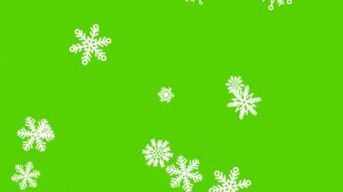 Different sort of snowflakes, effect snowfall. Green screen — Vídeo Stock