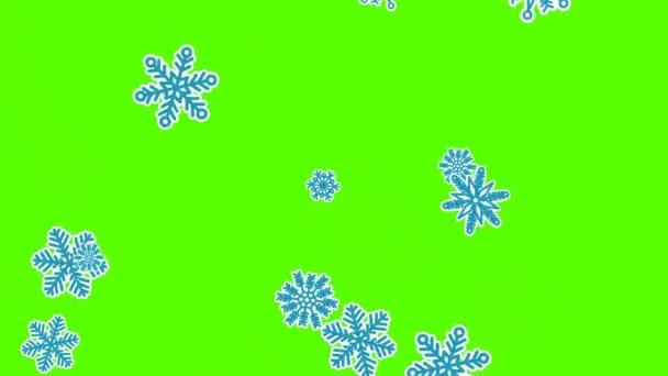 Tipo de copos de nieve, nieve efecto diferente. pantalla verde — Vídeo de stock