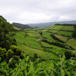 The colors of the Sao Miguel island. Azores — Stock Photo