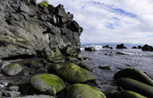The small creek of boulders . Prainha village, Pico island, Azores — Stock Photo