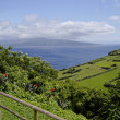 The view of cloudy Pico island. Azores. - Stock Photo