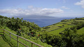 The view of cloudy Pico island. Azores. — Stock Photo