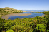 Lake Sant Jorge. Pico island — Stock Photo