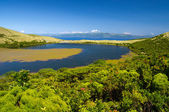 Lake Sant Jorge. Pico island — Stock Photo