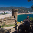 Foto Stock: Medieval cannon defending old fortress in Tossde Mar, CostBrava, Spain