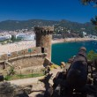 Medieval cannon defending the old fortress in Tossa de Mar, Costa Brava, Spain — Foto de Stock