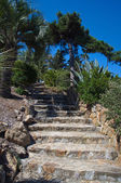 Marimurtra garden in Blanes, Costa Brava, Spain — Stock Photo
