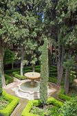 The view on the garden of Alhambra palace, Granada city, Andalucia, Spain — Stock Photo