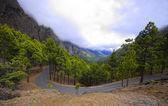 La Palma island, Caldera Taburiente,Canary, Spain — Stock Photo