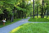 Park in the center of Bedzin City, Poland — Stock Photo