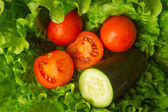 Lettuce and tomato salad — Stock Photo