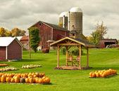 Farm in autumn — Stock Photo
